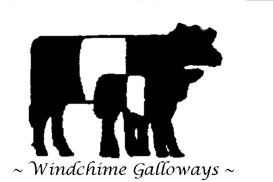 Windchime Galloways logo
