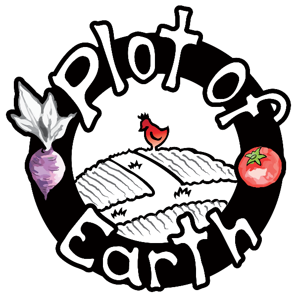 Plot of Earth logo